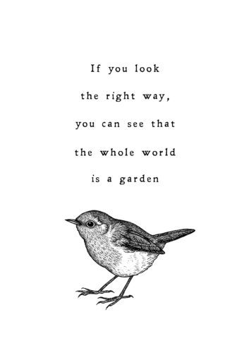 The Whole World is a Garden