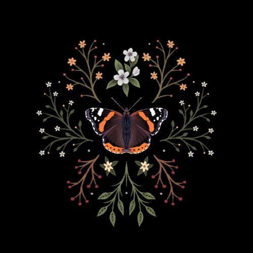 Red Admiral Botanical Butterfly